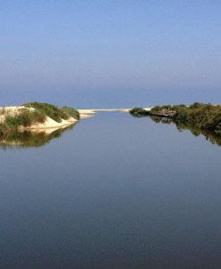 1דרך-הנהר_12-247×3002