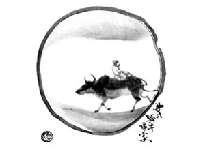cow06-1